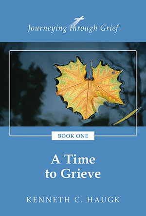 Journeying through grief book 1 a time to grieve fandeluxe PDF